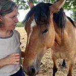 Communiquer avec le cheval2